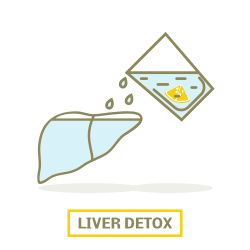 detoxing your liver with lemon water